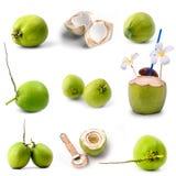 在白色隔绝的美味的绿色椰子果子 免版税库存照片