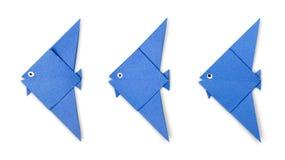 在白色隔绝的蓝色origami鱼集合 免版税图库摄影