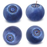 在白色隔绝的蓝莓的汇集 免版税库存图片