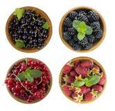 在白色隔绝的黑和红色莓果 黑莓、无核小葡萄干和莓 不同的果子和莓果拼贴画  在a的莓果 免版税图库摄影