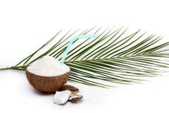 在白色隔绝的一半与削片和秸杆的鲜美椰子和绿色棕榈叶 免版税图库摄影