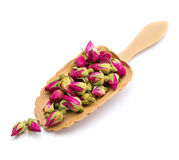 在被隔绝的一把木匙子的茶玫瑰色花 库存图片