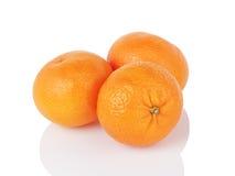 在白色隔绝的三个成熟蜜桔 免版税库存图片