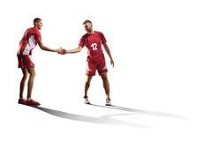 在白色隔绝的两个专业排球运动员 库存图片