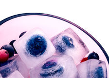 在白色隔绝的冰块的黑莓 免版税图库摄影