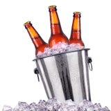 在白色隔绝的冰桶的啤酒瓶 库存照片