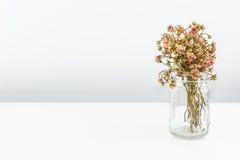在白色隔绝的凋枯的花花束  免版税图库摄影