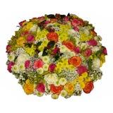 在白色隔绝的各种各样的花五颜六色的花束  库存图片