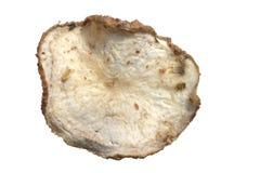 自然土豆片 免版税库存图片