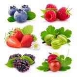 在白色隔绝的套成熟夏天莓果 免版税库存图片