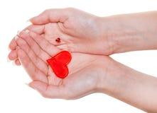 在白色隔绝的女性棕榈的两红色心脏 免版税库存图片