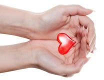 在白色隔绝的女性棕榈的红色心脏 库存图片