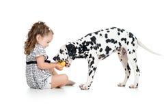 在白色隔绝的愉快的女婴哺养的狗 库存图片