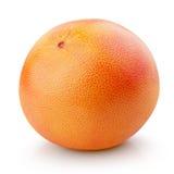 在白色隔绝的成熟葡萄柚柑桔 图库摄影