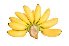 在白色隔绝的成熟Pisang Mas香蕉 免版税库存图片
