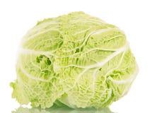 在白色隔绝的新鲜的成熟大白菜 库存图片