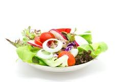 在白色隔绝的新鲜蔬菜沙拉 库存图片