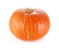 在白色隔绝的日本橙色南瓜 免版税库存照片