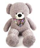 在白色隔绝的灰色玩具熊 免版税库存图片