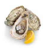 在白色隔绝的牡蛎 免版税库存图片