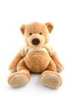 在白色隔绝的玩具熊 库存照片
