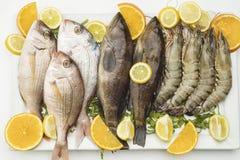 在白色隔绝的生鱼和虾板材 库存图片