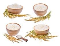 在白色隔绝的白米和未磨碎的米的汇集 免版税库存图片