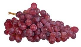 在白色隔绝的红色成熟葡萄 图库摄影