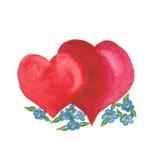 在白色隔绝的红色爱心脏 免版税库存图片