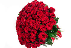 在白色隔绝的红色玫瑰被隔绝的大花束 库存图片