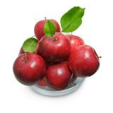 在白色隔绝的红色苹果 图库摄影