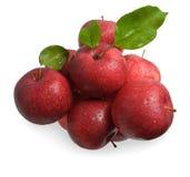 在白色隔绝的红色苹果 免版税库存照片