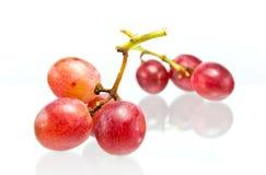 在白色隔绝的红葡萄 图库摄影