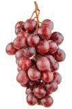 在白色隔绝的红葡萄 免版税库存图片