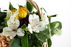 在白色隔绝的美丽的花束的片段 免版税库存图片