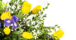 在白色隔绝的美丽的花束的片段 库存照片