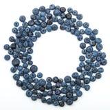 在白色隔绝的蓝莓框架 库存照片