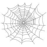 在白色隔绝的蜘蛛网,  免版税库存图片