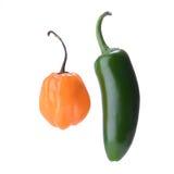 在白色隔绝的辣椒和哈瓦那人胡椒 免版税库存图片