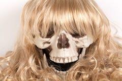 在白色隔绝的长的金发假发  库存图片