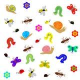 在白色隔绝的滑稽的色的乱画昆虫 库存照片