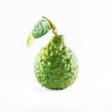 在白色隔绝的绿色粗砺的果皮香柠檬果子或非洲黑人石灰 免版税库存照片