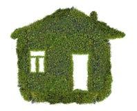 从在白色隔绝的绿色青苔的简单的房子 免版税库存照片