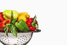 在白色隔绝的滤锅的新鲜的混杂的色的甜椒 库存照片