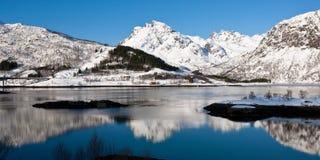 在白色雪的全景反射 免版税库存照片