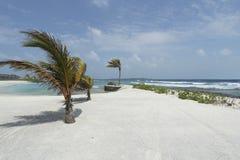 在白色马尔代夫海滩的风 免版税库存照片