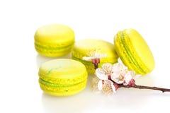 在白色,选择聚焦隔绝的黄色蛋白杏仁饼干 免版税库存照片
