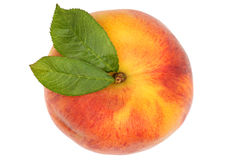 在白色从上面隔绝的桃子果子顶视图 免版税库存照片
