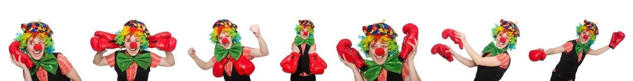 在白色以各种各样的姿势隔绝的小丑 库存图片