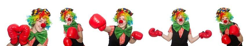 在白色以各种各样的姿势隔绝的小丑 图库摄影